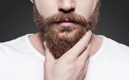 Nghiên cứu mới gây 'sốc': Râu đàn ông chứa nhiều vi khuẩn hơn lông chó