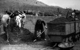Bị ngược đãi, 700 công nhân mỏ than Hà Tu vùng lên đấu tranh, đốt nhà cai thầu