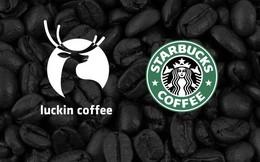 Để đánh bại gã khổng lồ Starbucks, Luckin Coffee không ngại 'chơi lớn': Mỗi 3,5 tiếng trôi qua lại mở thêm 1 cửa hàng cà phê mới tại Trung Quốc
