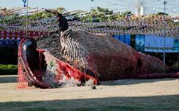 7 ngày qua ảnh: Tượng cá voi khổng lồ chết vì nuốt nhiều rác thải nhựa