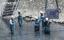 Sông Tô Lịch có thể hồi sinh bởi công nghệ Nhật khi 150.000m3 nước thải đổ vào hàng ngày?