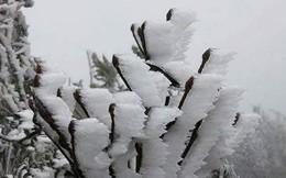 Miền Bắc sẽ chịu thêm 3-5 đợt không khí lạnh trong tháng 1/2019