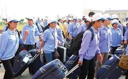 Đài Loan khoan hồng cho lao động 'chui' nước ngoài tự thú về nước