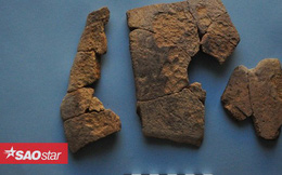Phát hiện mảnh vỡ hộp sọ voi trong pháo đài Ai Cập 2.300 tuổi