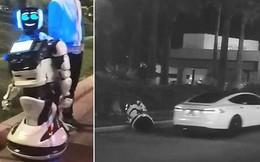 """Máy móc đại chiến: 1 con robot tự ý """"tách đoàn"""" bị xe tự lái Tesla tông chết"""