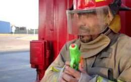 Rảnh quá, lính cứu hỏa đốt luôn nhà dân