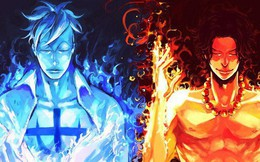 """One Piece: Sự khác biệt giữa ngọn lửa """"xanh"""" của Phượng Hoàng Marco và ngọn lửa """"đỏ"""" của Hỏa Quyền Ace"""