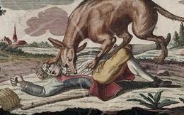 Quái thú ăn thịt người vùng Gévaudan: Nỗi kinh hãi của người dân Pháp hồi thế kỷ 18