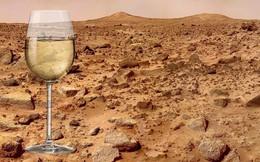 Mỹ sẽ trồng nho làm rượu vang trên sao Hỏa?