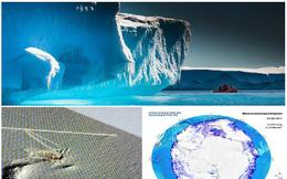 Những hiện tượng kỳ lạ tại Nam Cực khiến nhà khoa học bối rối