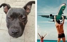 Chẳng cần Photoshop, 14 ảnh chụp ngẫu nhiên này đủ sức khiến bạn hoang mang cực độ