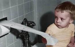 Trước khi có giấy vệ sinh, con người đã dùng gì để thay thế?