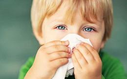 Trẻ vài bữa lại sổ mũi một lần, là bệnh gì?