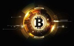 Giá Bitcoin hôm nay 26/1 tiếp tục sụt giảm