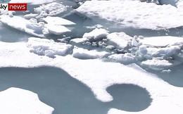 Bắc Cực trải qua mùa hè nóng nhất trong 115.000 năm