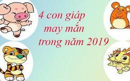 4 con giáp cực kì may mắn trong năm Kỷ Hợi 2019