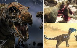 """Hành trình xâm chiếm thế giới đầy bất ngờ của loài khủng long: """"Lên voi xuống chó"""" và kết thúc ở một nơi đầy bất ngờ"""