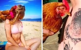 """Cô gái xinh đẹp coi gà như bạn thân, cùng ăn ngủ, đi du lịch và xăm cả hình """"bạn"""" lên người"""