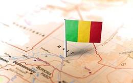 Mali: Hàng chục nghìn người tham gia biểu tình chống chính phủ
