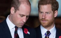 Bí mật sốc về việc kế vị ngôi vương của hai anh em William