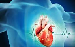 Dấu hiệu cảnh báo nguy cơ mắc bệnh tim
