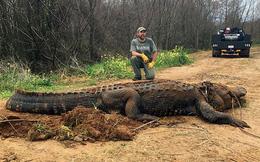 Nhà sinh vật học bắt được cá sấu khổng lồ, người dân nghi là trò lừa đảo