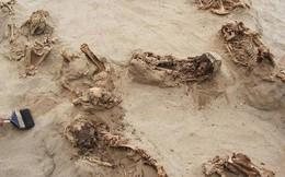 Khai quật khu hiến tế trẻ em lớn nhất lịch sử: Hàng trăm bộ xương lộ ra, đã bị lấy mất nội tạng