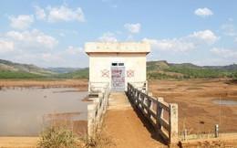 Bắt giam quyền Giám đốc Ban quản lý dự án ở Đắk Nông