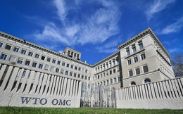 Tại sao Trung Quốc hăng hái cải tổ WTO trong khi Mỹ muốn từ bỏ?