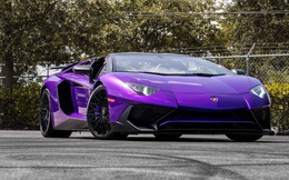 Tuổi Bính Dần mua xe màu gì hợp phong thủy?