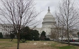 Hạ viện Mỹ cho phép công bố toàn văn báo cáo điều tra nghi vấn Nga can thiệp bầu cử