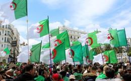 Dân Algeria tiếp tục biểu tình đòi tự do dân chủ