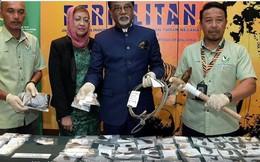 Săn trộm gấu và hổ, hai người Việt Nam bị bắt giữ
