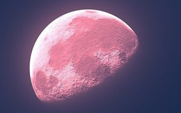 """Hết trăng xanh, trăng máu, giờ hãy chuẩn bị ngắm """"trăng hồng"""" sẽ diễn ra ngay tối mai đi"""