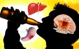 Rượu đi đến đâu, cơ thể bị hủy hoại tới đó, hãy khám phá hành trình tàn phá của rượu
