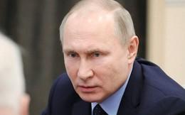 """Tổng thống Nga gọi điều gì là """"đầu voi đuôi chuột"""" khi điện đàm với đồng cấp Trump?"""