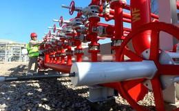 Giá dầu tăng tuần này do căng thẳng ở vùng Vịnh