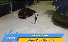 Video: Đi lại tỉnh bơ sau khi bị xe tông bay vài mét