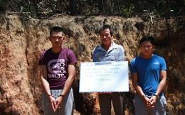 Lộ diện kẻ thuê người đầu độc gần 11ha rừng ở Lâm Đồng