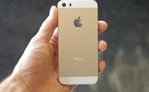 Chưa ra mắt, iPhone đã được xếp hàng chờ mua