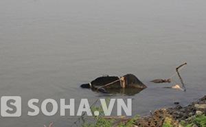Thi thể trên sông Hồng không phải là nạn nhân vụ ném xác