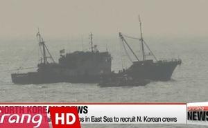 Triều Tiên bán quyền đánh cá cho Đài Loan vì... cạn tiền?