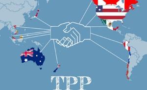 Bất chấp không có Mỹ, 11 quốc gia nhất trí xem xét thúc đẩy TPP