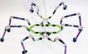 Nghiên cứu sinh ở Harvard tạo ra robot nhện chỉ bằng ống hút