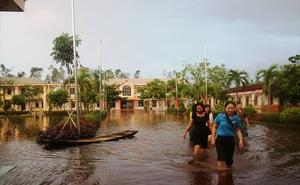 Ngập lụt sau áp thấp nhiệt đới, đỉa vào cả trường học