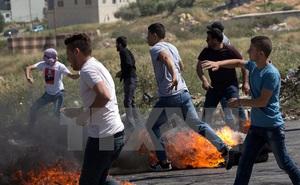 Israel-Palestine: Giải pháp 2 nhà nước là con đường hòa bình duy nhất