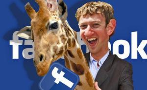 10 sự thật vui nhộn bất ngờ về Mark Zuckerberg không phải ai cũng biết