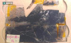 Phát hiện hóa thạch tiết lộ sự sống 3,5 tỷ năm khi Trái Đất chưa có oxy