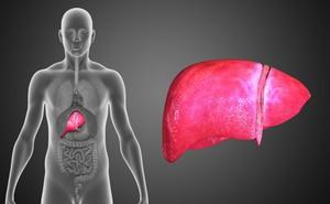 [Cẩm nang] Ung thư gan phát triển trong lặng lẽ, khi có dấu hiệu này là gan đang 'kêu cứu'