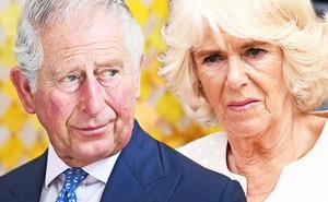 """Người hâm mộ chỉ trích bà Camilla mắc """"bệnh lười"""", kiêu căng, sau khi bỏ về nước, để chồng một mình trong chuyến công du"""